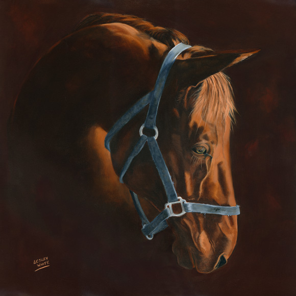 The Blue Halter - 20 x 20<br />$1,320.00 (framed)